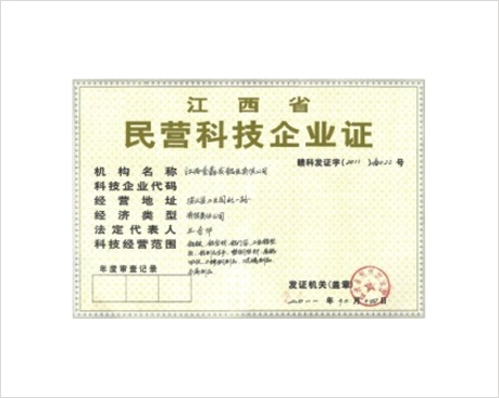 民营科技企业证